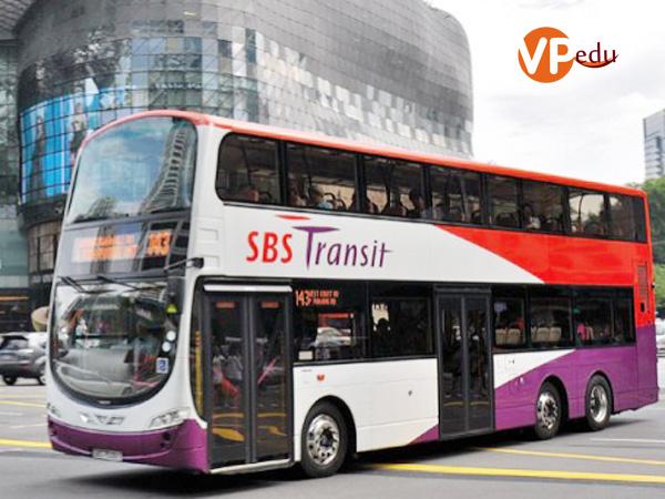 Đi lại bằng xe bus tại Singapore