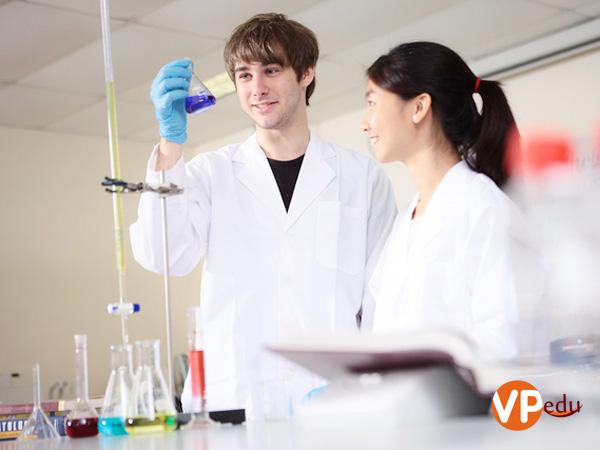 Sinh viên phải hoàn thành tối thiểu 4 môn học và 1 đồ án chuyên ngành