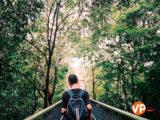 Khám phá những điểm du lịch miễn phí tại Singapore