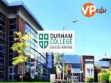 Trường Durham College - Nơi du học lý tưởng