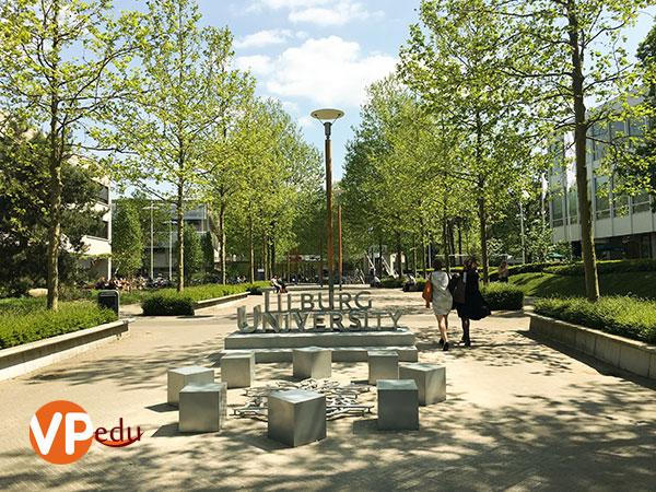Khuôn viên Trường Đại học Tilburg rất lý tưởng với sinh viên quốc tế