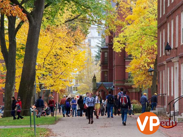Môi trường học tập tốt và cơ hội nhận được học bổng CO-OP Canada 2020