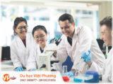 Ngành quản lý y tế tại học viện MDIS thu hút nhiều sinh viên quốc tế theo học