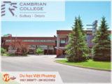 Trường cao đẳng Cambrian College