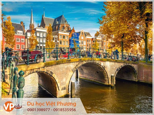 Cùng Tư vấn du học Hà Lan tại Tây Ninh thực hiện ước mơ du học