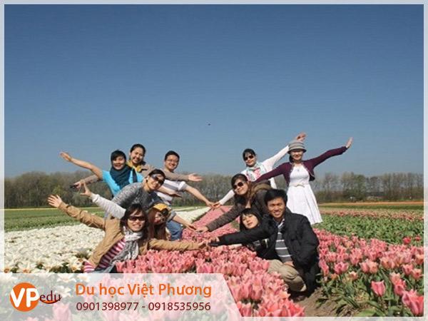Du học Hà Lan cùng trải nghiệm và khám phá nhiều điều mới lạ từ đất nước xinh đẹp này