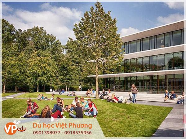 Khám phá và trải nghiệm cuộc sống du học sinh tại Hà Lan