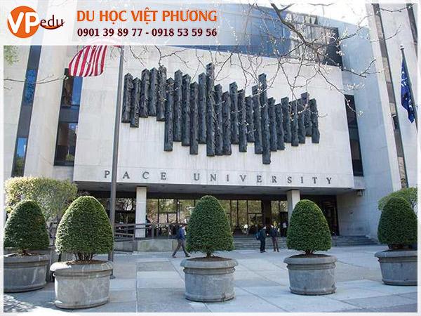 Pace University: Trường quản trị kinh doanh hàng đầu ở Mỹ