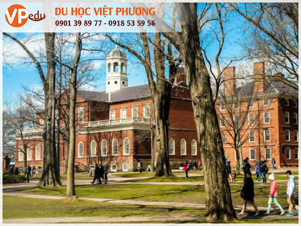 Đại học Harvard là điểm du học mơ ước của hàng triệu sinh viên quốc tế
