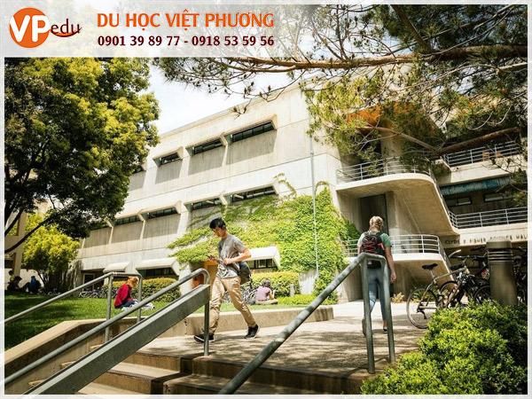 Trường CSU thu hút hàng ngàn sinh viên quốc tế mỗi năm