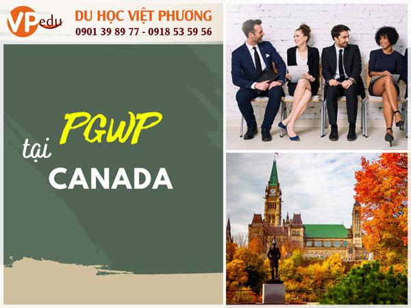 PGWP cho phép du học sinh dễ tìm việc tại Canada
