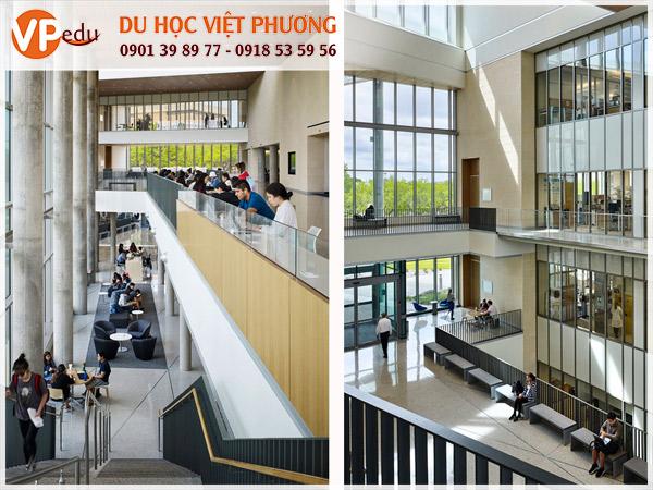 Trường đại học Texas - Môi trường học tập tốt dành cho sinh viên quốc tế