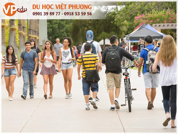 Arizona State University - Điểm du học lý tưởng dành cho sinh viên quốc tế