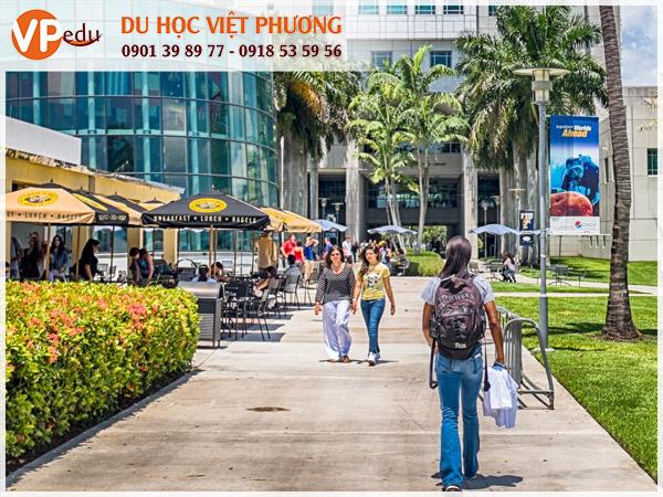 FIU trường đại học nghiên cứu hàng đầu tại Florida