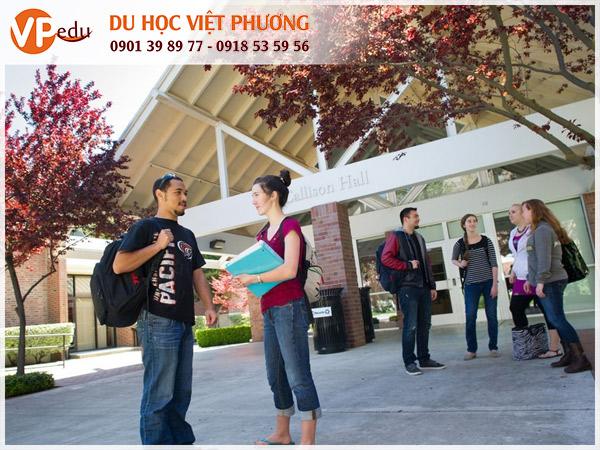 Đại học Pacific giúp bạn phát triển trong lĩnh vực bạn chọn