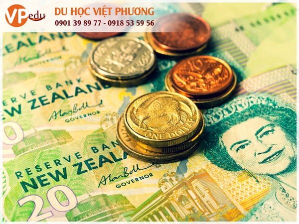 Chi phí sinh hoạt ở New Zealand 1 tháng bao nhiêu tiền?