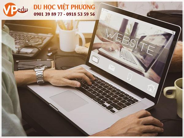 Thiết kế website là việc làm công nghệ thông tin phổ biến