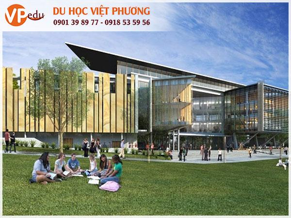 Chương trình đào tạo đa dạng tại The University of Queensland
