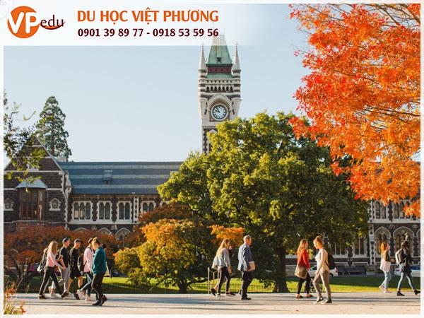 Chi phí du học New Zealand - Mọi điều sinh viên cần biết