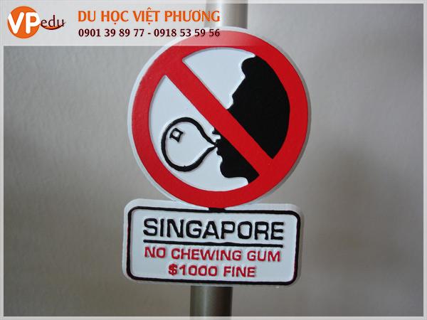 Kẹo cao su bị cấm ở Singapore, nếu bạn bị bắt vì tội buôn bán hoặc sử dụng kẹo cao su sẽ bị phạt lên đến 100.000 SGD
