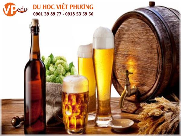 rượu và thức uống có cồn bị cấm ơn singapore