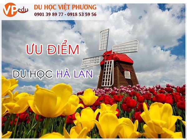 Ưu điểm khi Du học Hà Lan
