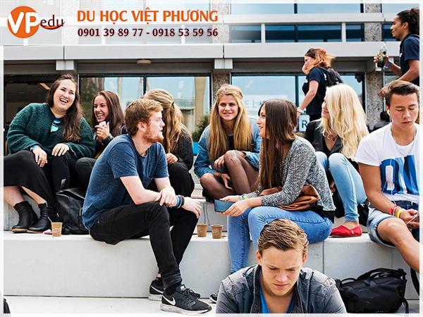 Du học Hà Lan hệ dự bị Đại học là chương trình được nhiều sinh viên quốc tế lựa chọn khi đi du học tại đây