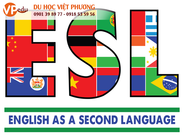 Các khóa học ESL ở Philippines sẽ dạy cho bạn tất cả các kỹ năng cần thiết để giao tiếp hiệu quả bằng tiếng Anh bằng cách tập trung vào các kĩ năng nói, nghe, đọc, ngữ pháp, viết và từ vựng.