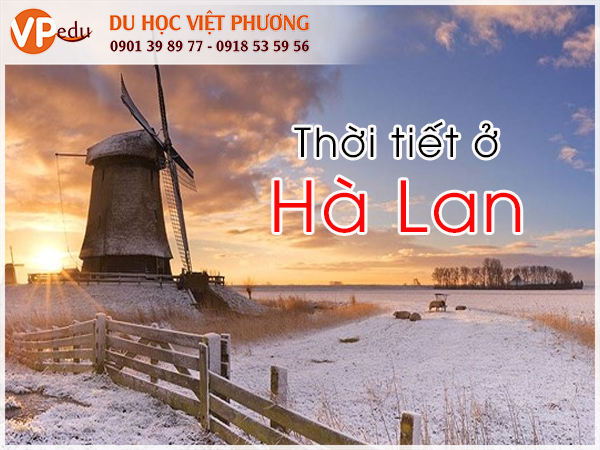 Hà Lan là một quốc gia mà bạn không thể thực sự tận hưởng mùa hè khi du học tại đây